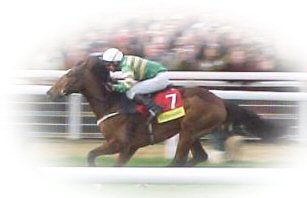 Istrabraq at Cheltenham